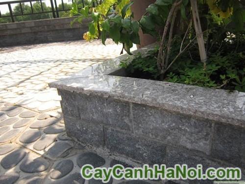 Ứng dụng đá granite trong trang trí sân vườn, công viên