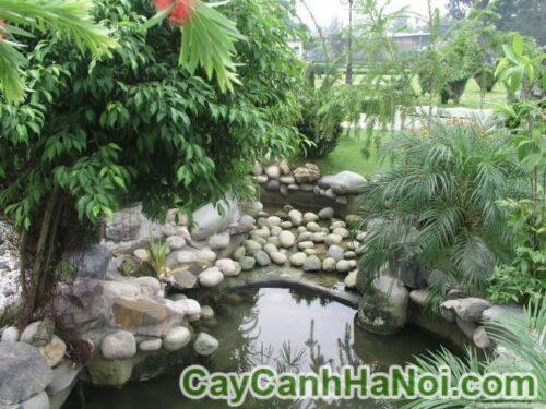 4 yếu tố then chốt khi sử dụng đá cho cảnh quan sân vườn