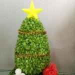Cây May Mắn Cây Thông Noel Chậu Trái Tim