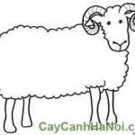 Cây May Mắn Quả Cầu Con Cừu