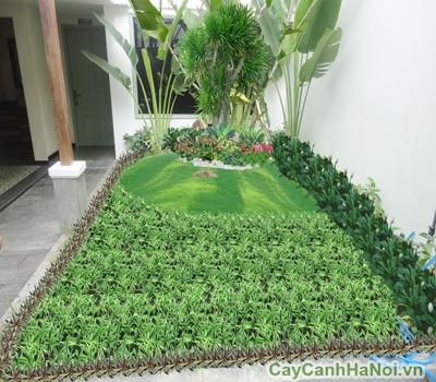 Sơ đồ thiết kế vườn hoa trước nhà