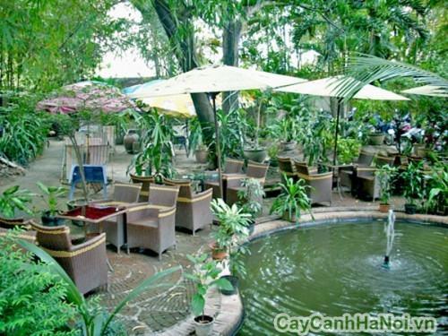 Cafe sân vườn