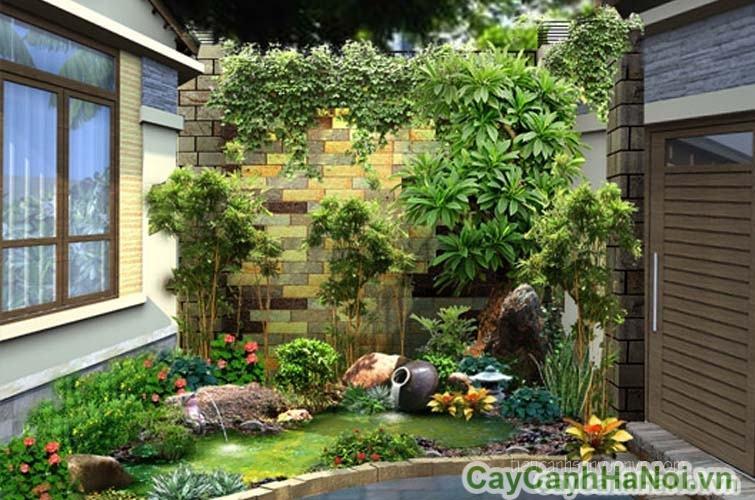 Dịch vụ chăm sóc sân vườn
