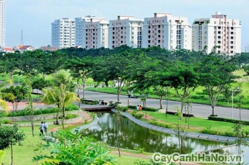 Cảnh quan đô thị xanh