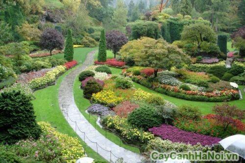 Thiết kế sân vườn Châu Âu đẹp