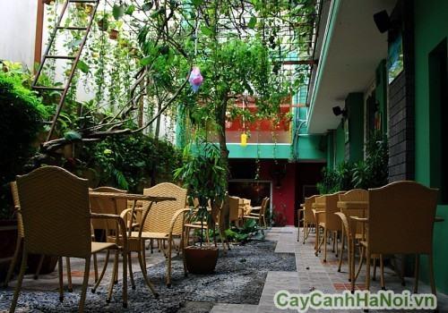 Sân vườn cafe nhỏ trong nhà