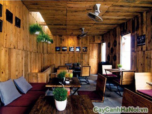 Tiểu cảnh quán cafe