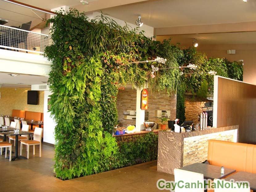 Vườn đứng nhà hàng, khách sạn