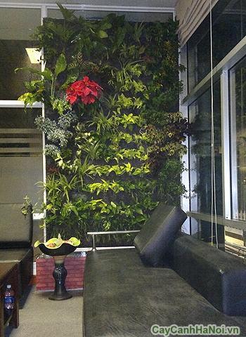 Vườn trên tường trong nhà