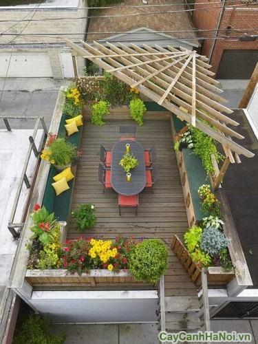 Sân vườn cho sân thượng