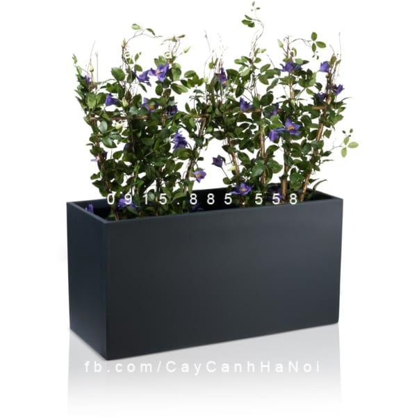 chau_composite_trong_cay_cao_cap_anber_5001den-mo-5