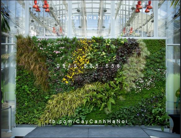 thiết kế thi công vườn đứng