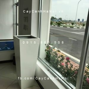 Chậu cây cảnh composite iPot vát đáy| IP-00072
