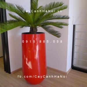 Chậu composite iPot trồng cây tròn cao| IP-00036