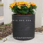 Chậu composite iPot trồng cây tròn| IP-00028