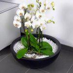 Chậu hoa composite iPot tròn đẳng cấp| IP-00006