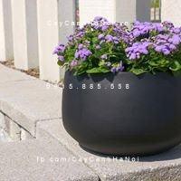 Chậu nhựa composite iPot cao cấp| IP-00103