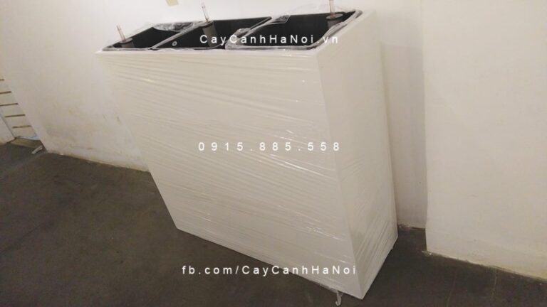 chau-nhua-composite-ipot-sang-trong-ip-00156 (1)