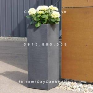Chậu nhựa composite iPot trồng cây cao cấp | IP-00177