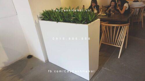Chậu nhựa trồng cây composite iPot chữ nhật| IP-00155