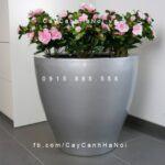 Chậu trồng cây composite iPot tròn| IP-00050