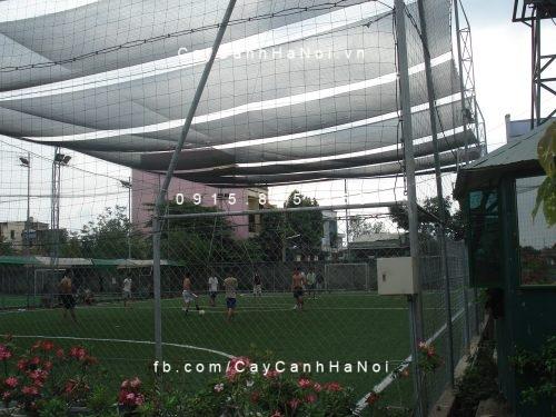 Cuộn lưới che nắng