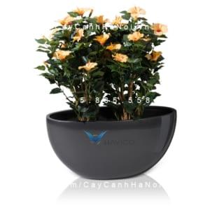 Chậu trồng cây composite Havico cao cấp  HVC-00001Chậu trồng cây composite Havico cao cấp  HVC-00001