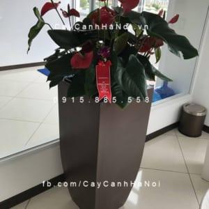 Chậu trồng cây composite iPot sang trọng| IP-00180