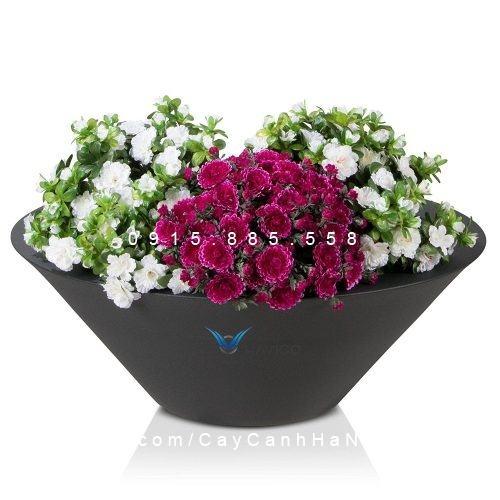 Chậu hoa composite Havico Tazah tròn| C-316