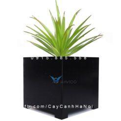 Chậu nhựa trồng cây composite Havico vuông  HVC-00013