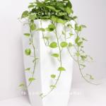 Chậu trồng cây composite Havico cao cấp  HVC-00033