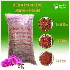 Vỏ thông Orchids Habita nhập khẩu Indonesia