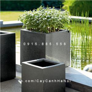 Bình hoa Composite Esteras Arnhem trồng cây cảnh vuông thấp
