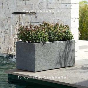 Chậu trồng cây bằng nhựa composite Esteras Gillingham
