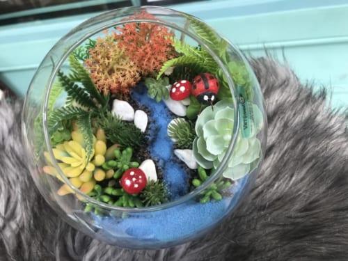 Tiểu cảnh sen đá trồng chậu thủy tinh